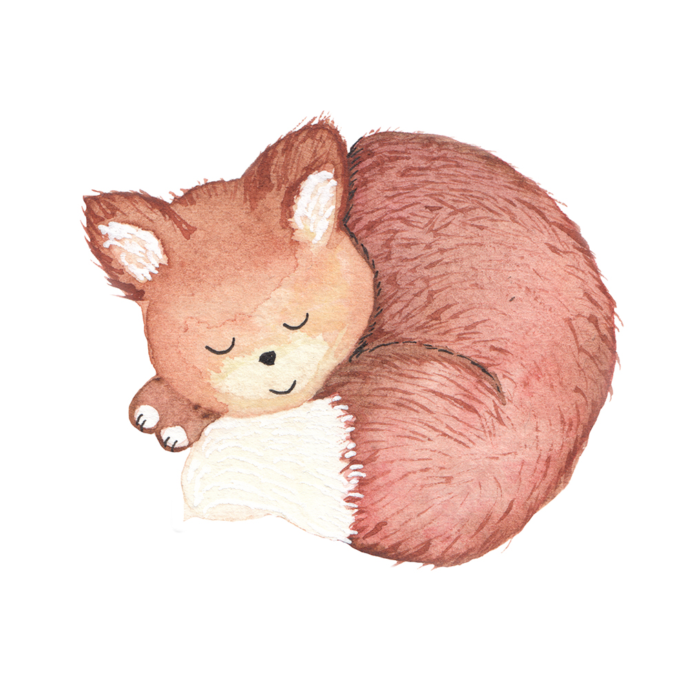 sleeping fox illustration