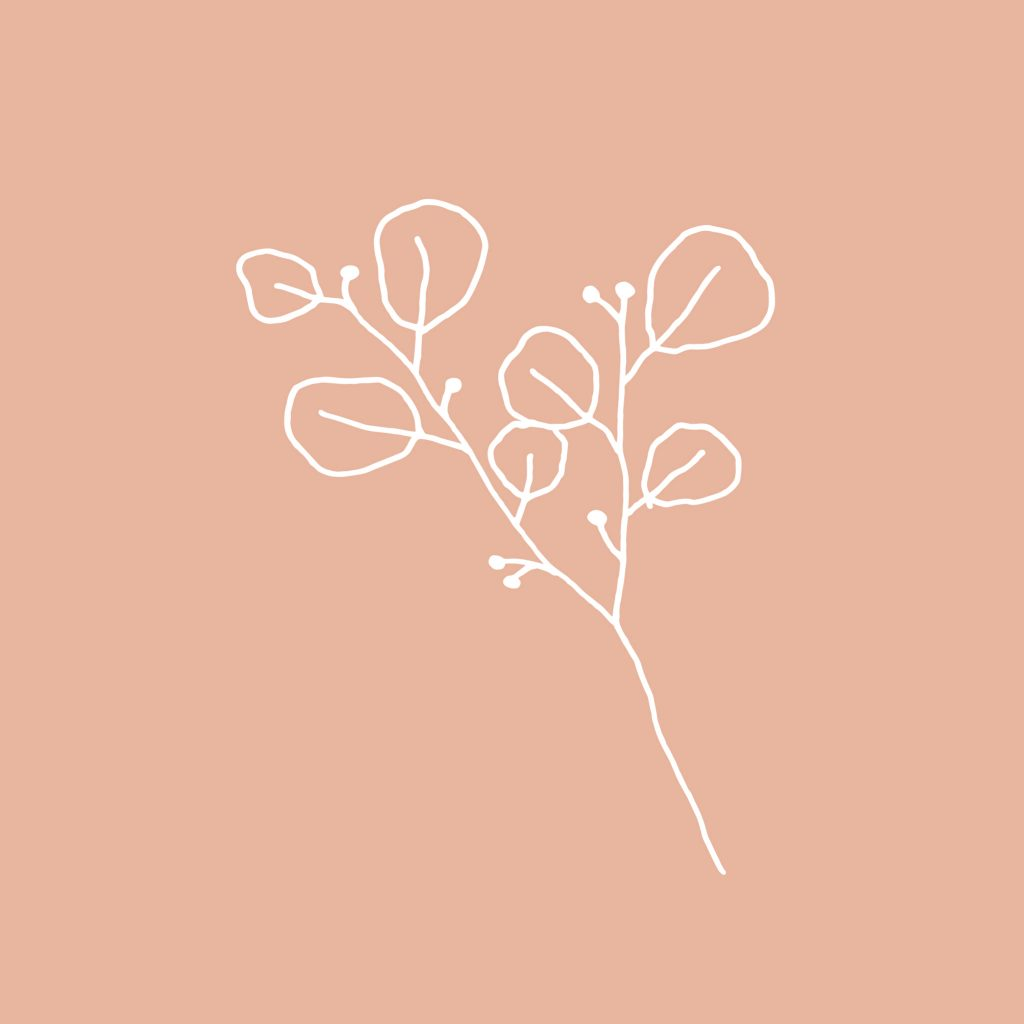 white twig illustration on solid peach